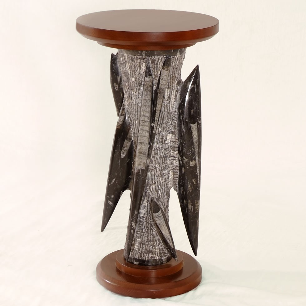 wood & fossilized stone table